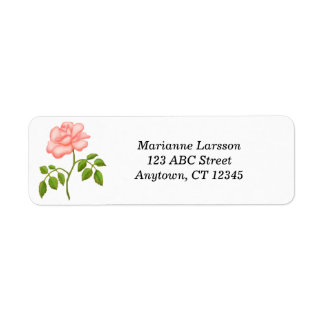Etiquetas de dirección del rosa de té rosado