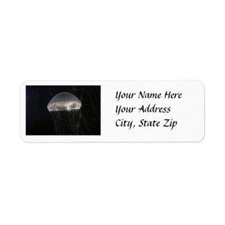Etiquetas de dirección: Jalea cristalina Etiqueta De Remitente
