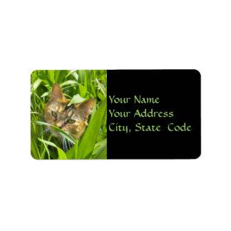Etiquetas de dirección preciosas del gatito de la