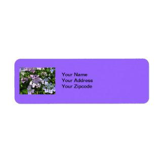 Etiquetas de dirección púrpuras de Hydrangia