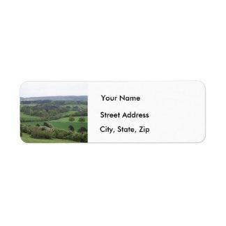 Etiquetas de dirección verdes y agradables de la
