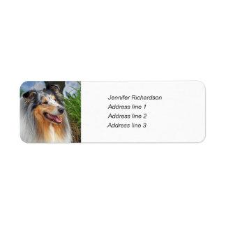 Etiquetas de encargo del remite del perro áspero d etiquetas de remite