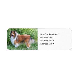 Etiquetas de encargo del remite del perro áspero d etiqueta de remite