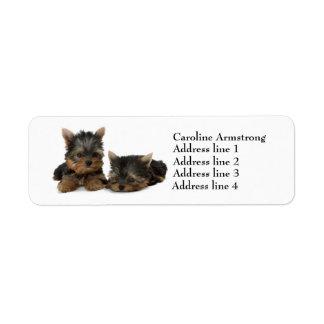 Etiquetas de encargo del remite del perro de etiqueta de remitente