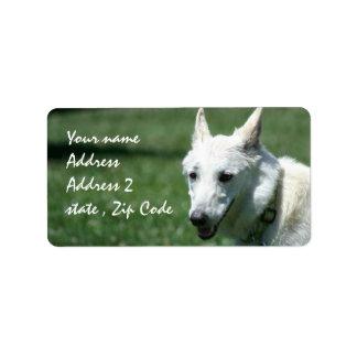 Etiquetas de envío blancas del pastor alemán