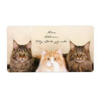 Etiquetas de envío de los gatos de Coon de Maine