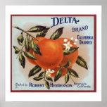 Etiquetas de la fruta de los naranjas de la marca  posters