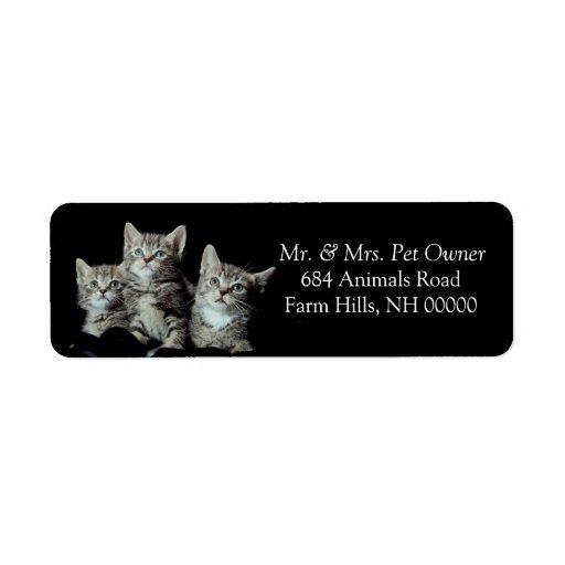 Etiquetas de los pegatinas del remite de los gatit etiqueta de remite
