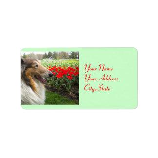 Etiquetas de los tulipanes del collie N Etiqueta De Dirección