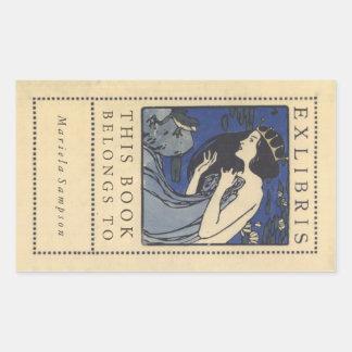 Etiquetas del libro de la princesa y de la rana de pegatina rectangular