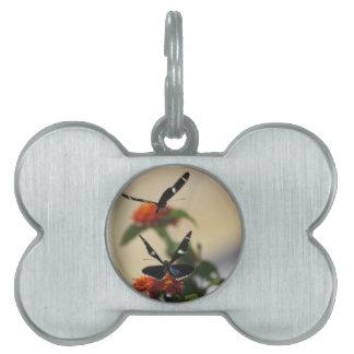 Etiquetas del mascota de la danza 3 de la mariposa placa mascota