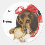 Etiquetas del regalo del perrito del beagle pegatina redonda