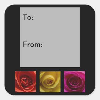 Etiquetas del regalo del rosa del amarillo pegatina cuadrada