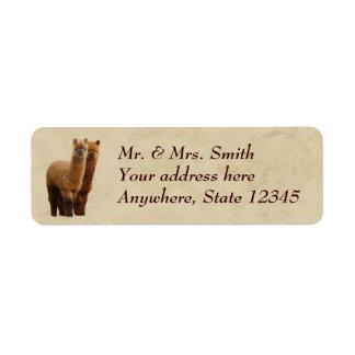 Etiquetas del remite de la alpaca etiqueta de remitente