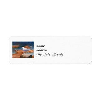 Etiquetas del remite de la gaviota etiqueta de remitente