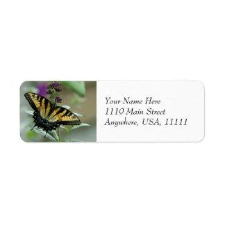 Etiquetas del remite de la mariposa de Swallowtail Etiqueta De Remite