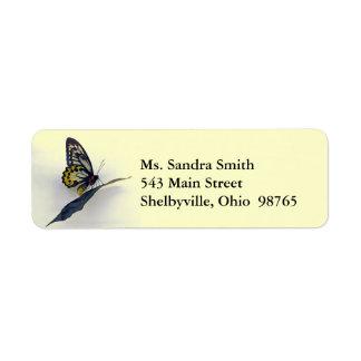 Etiquetas del remite de la mariposa de Swallowtail Etiquetas De Remite