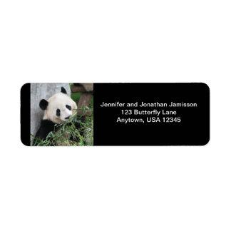 Etiquetas del remite de la panda etiqueta de remitente