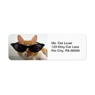 Etiquetas del remite de las gafas de sol del gato  etiqueta de remitente