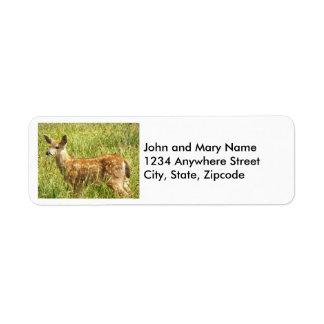 Etiquetas del remite de los ciervos del bebé etiqueta de remite