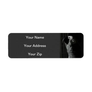 Etiquetas del remite del loro del gris africano etiqueta de remitente