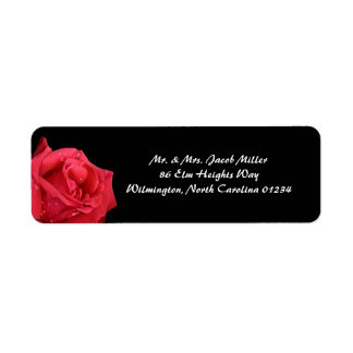 Etiquetas elegantes del remite del rosa rojo etiqueta de remite