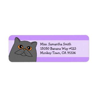 Etiquetas grises lindas del remite del gato persa etiqueta de remitente