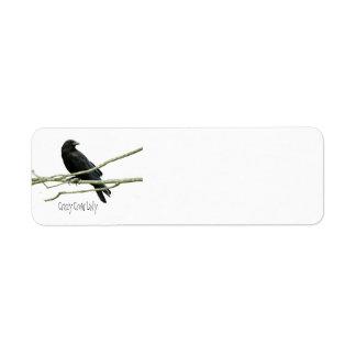 Etiquetas locas de la señora remite del cuervo etiqueta de remitente