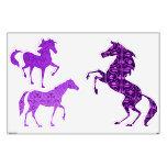 Etiquetas púrpuras de la pared de los caballos de