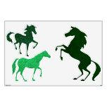 Etiquetas verdes de la pared de los caballos de la