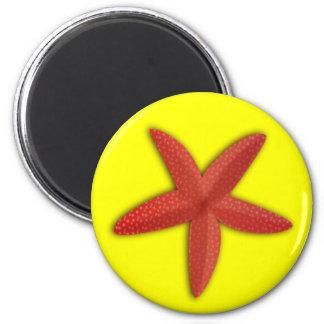 etoile_de_mer_Vector_Clipart red starfish sealife Magnet