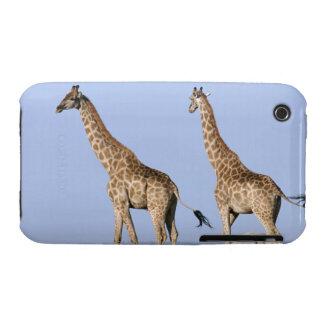 Etosha National Park, Namibia 3 Case-Mate iPhone 3 Cases