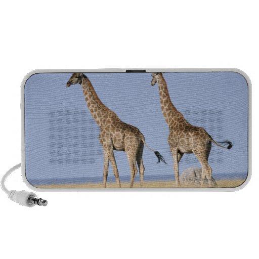 Etosha National Park, Namibia iPod Speaker