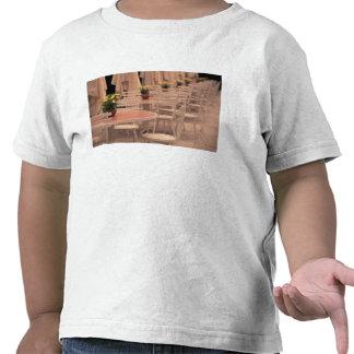 EU, France, Loire Valley, Indre, et, Loire, 2 Tee Shirts