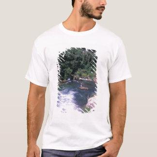 EU, France, Provence, Frontaine de Vaucluse T-Shirt