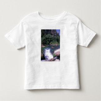 EU, France, Provence, Frontaine de Vaucluse Toddler T-shirt