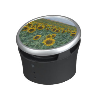 EU, France, Provence, Sunflower field Bluetooth Speaker