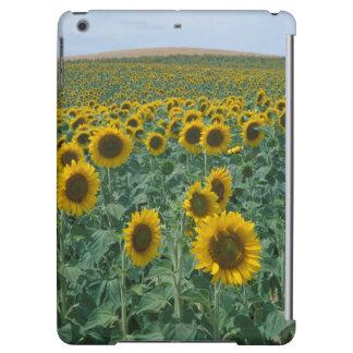 EU, France, Provence, Sunflower field iPad Air Cover