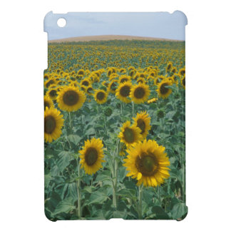 EU, France, Provence, Sunflower field iPad Mini Cases