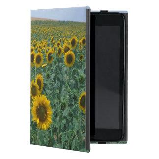 EU, France, Provence, Sunflower field iPad Mini Cover