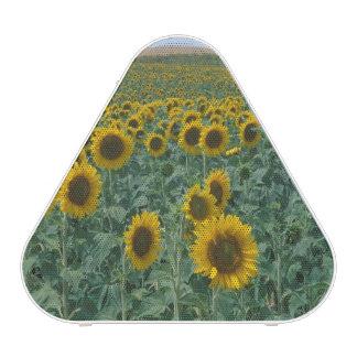 EU, France, Provence, Sunflower field Speaker