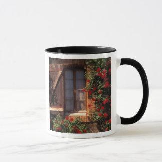EU, France, Provence, Vaucluse, Apt. House Mug
