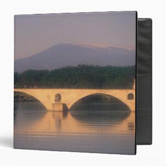 EU, France, Provence, Vaucluse, Avignon. Pont Binder