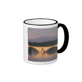 EU, France, Provence, Vaucluse, Avignon. Pont Ringer Coffee Mug