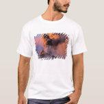 EU, Italy, Sicily, Mt. Etna summit vent T-Shirt
