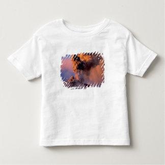 EU, Italy, Sicily, Mt. Etna summit vent Toddler T-shirt