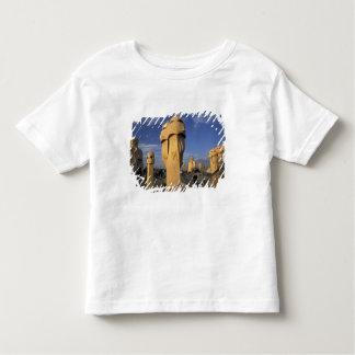 EU, Spain, Catalonia, Barcelona. Antonio Gaudi's Toddler T-shirt