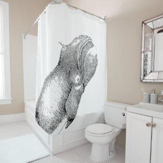 Eubalaena glacialis shower curtain