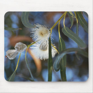 Eucalyphoria Mouse Pad