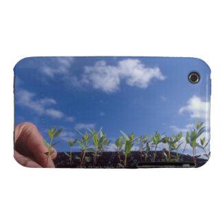 Eucalyptus Globulus (Bluegum) tree seedlings. Case-Mate iPhone 3 Cases